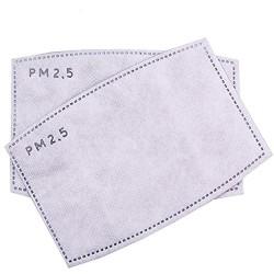 Filtr do maseczki antysmogowej PM 2.5 (2 szt.)